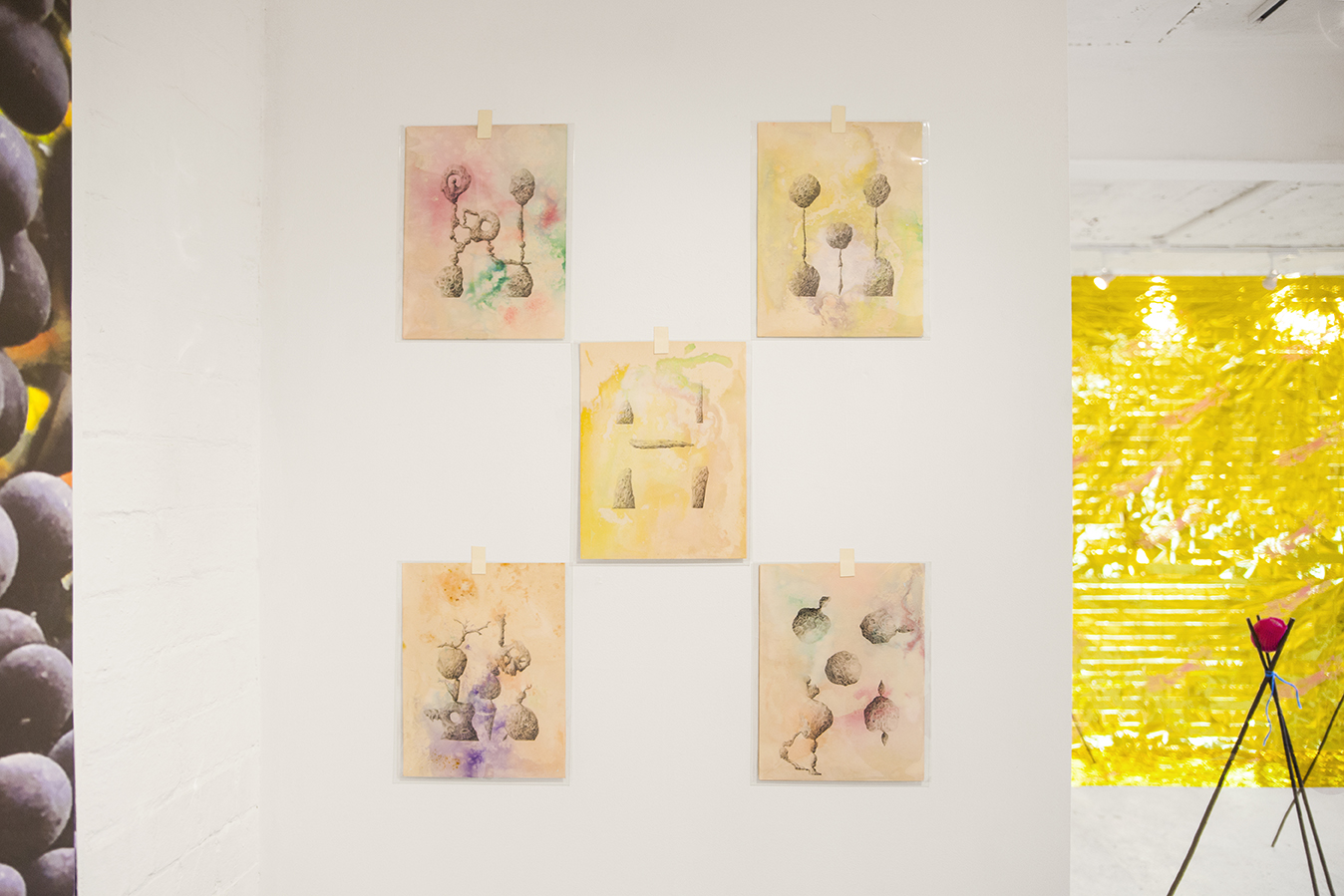 Quincunx Drawings I, II, III, IV & V — Pencil on paper dyed with sugar soap, sea salt, Fairy Liquid, water, teflon bicycle lubricant, clothes softener, ink, acrylic paint, wood glue and turmeric, 2018.