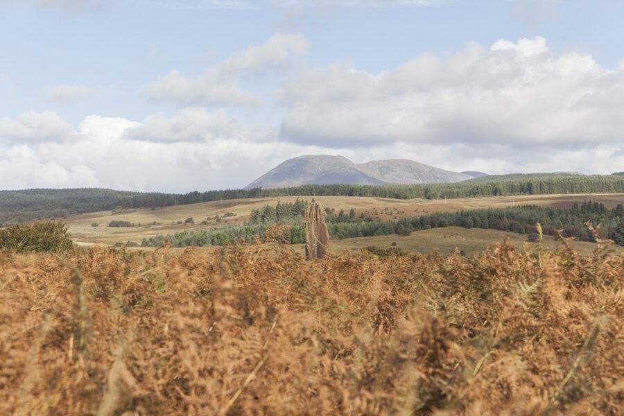 Machrie Moor