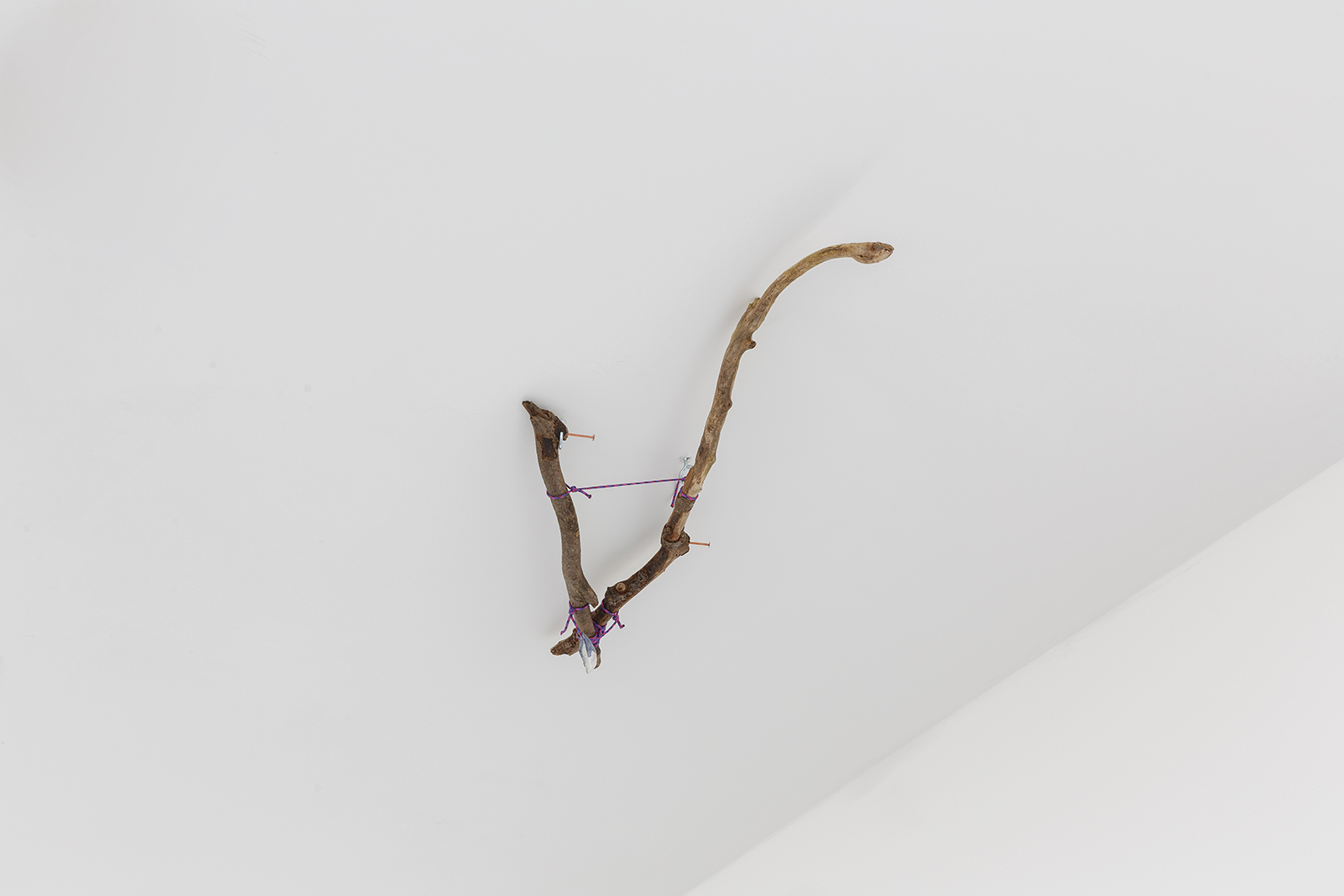 Cernunnos — Estovers, rope, copper nails, mussel shell, 2019.
