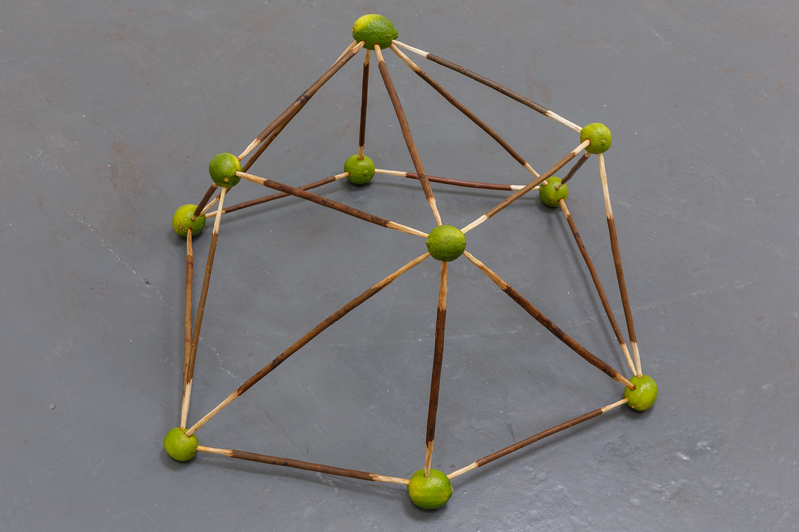 Lime Dome — Whittled willow poles, limes, 2019.