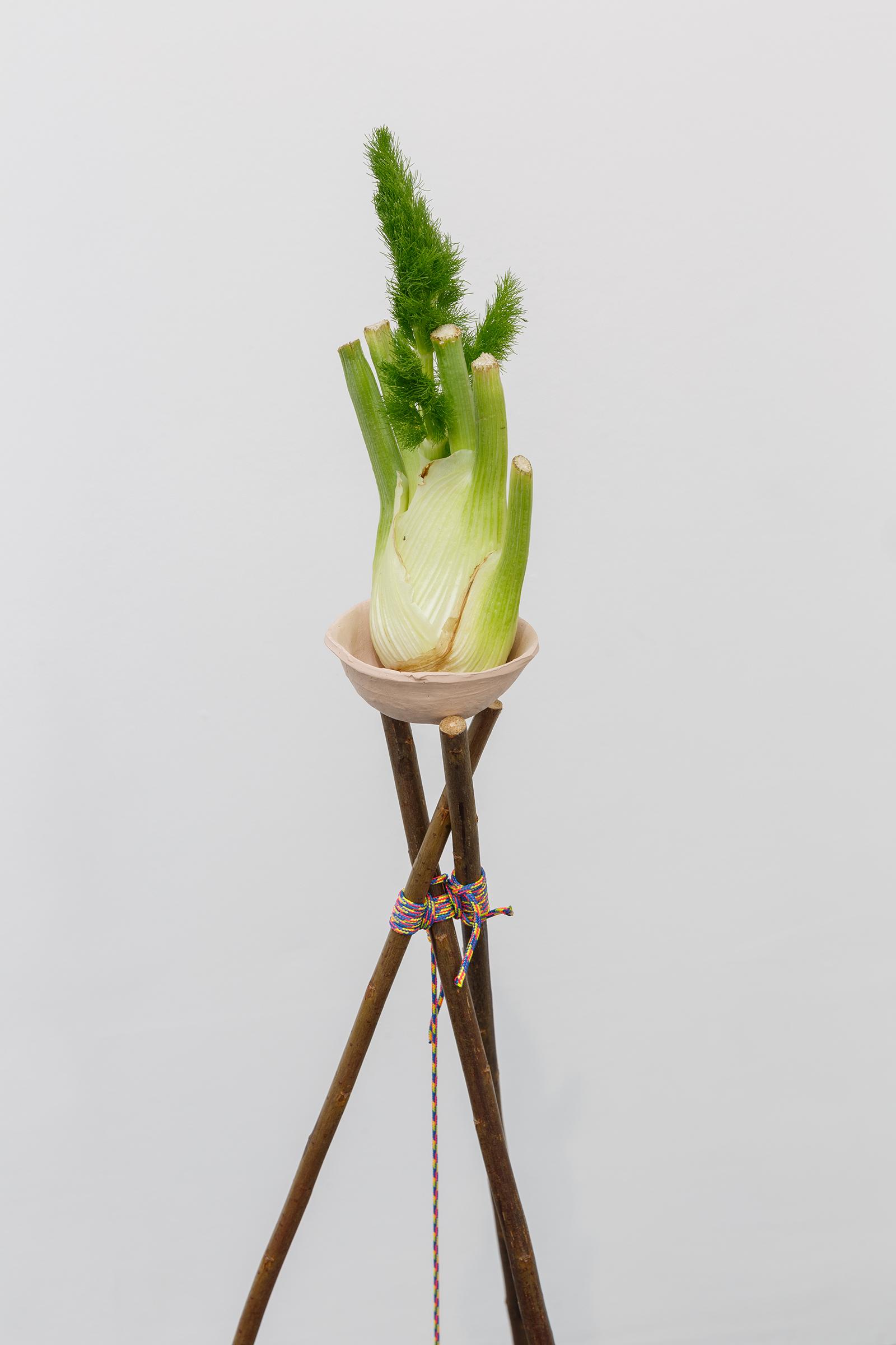 Prometheus V Erce (detail) — Coppiced willow poles, rope, ceramic, egg, fennel, soil, beans, nuts, 2019.