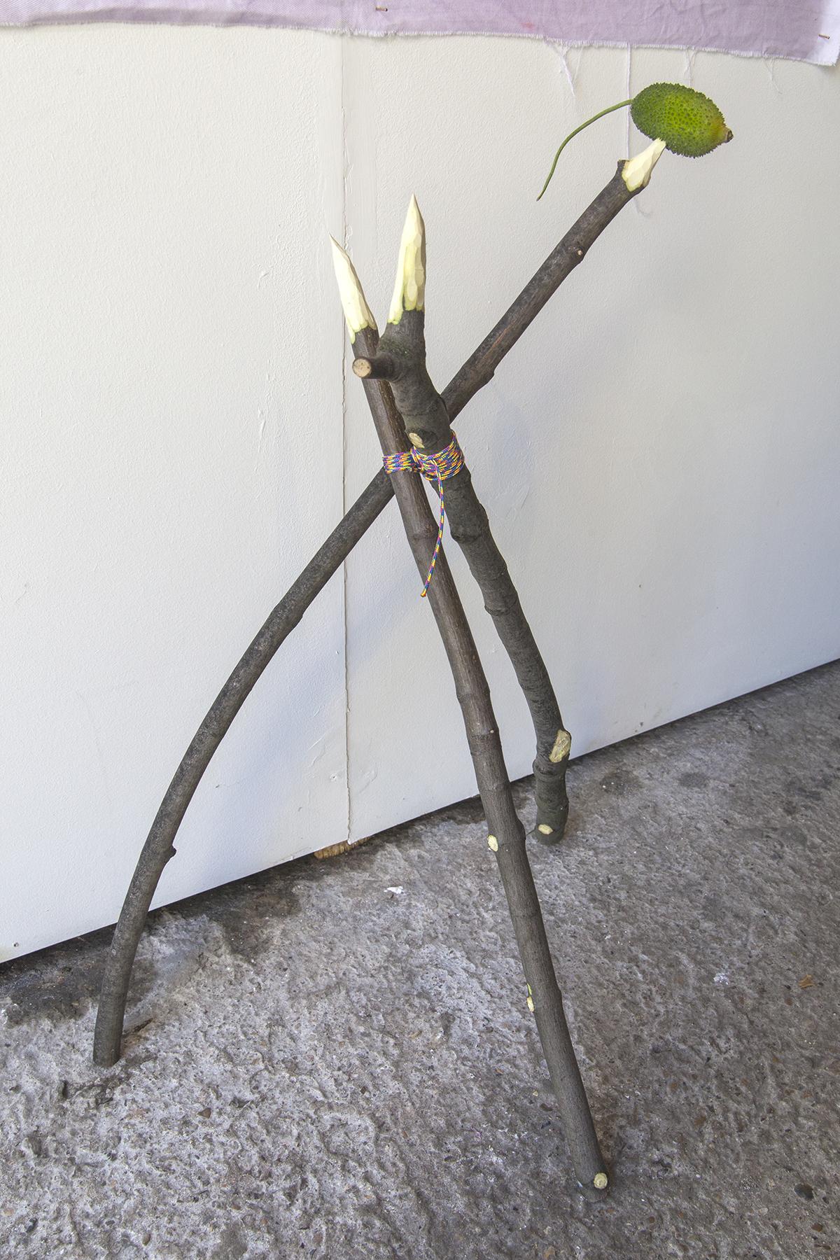 Shrike — Wooden poles, rope and bitter gourd, 2019.